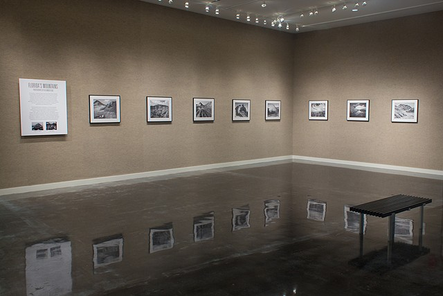 Installation view at the Lufrano Gallery, Jacksonville, FL