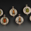 Entomology Earrings