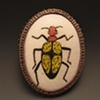 Blister Beetle Brooch