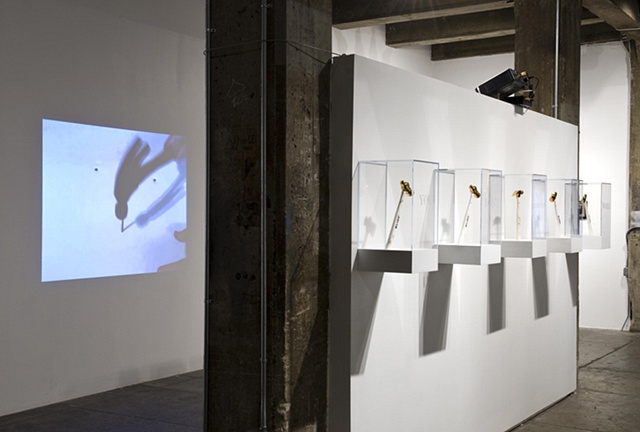 WORK ETHIC, Installation View 1