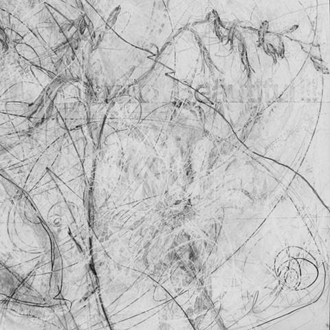 Annabelle II (detail)
