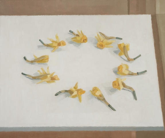 Daffodils in a Circle