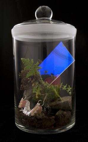 Biosphere Module #1 (Earth and Sky)