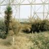 Synthetic Coastal Desert Biome