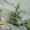 Synthetic Coastal Temperate Range Biome