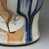 Cup 2 (view 1)