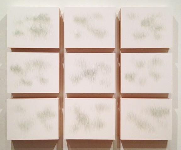 Joanne Aono, Green Fields, drawing, Installation