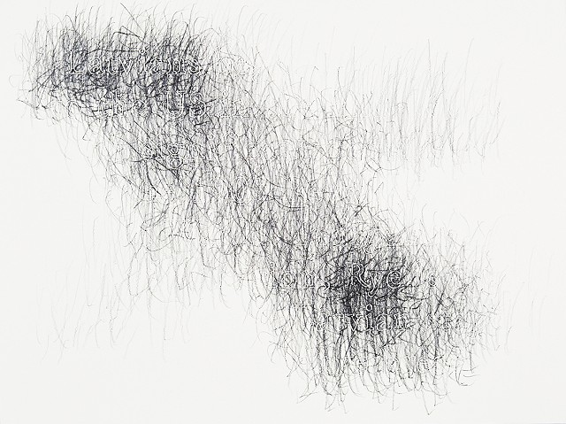 Joanne Aono, Home Fields, drawing, Latvia, Rye