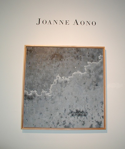Joanne Aono Drawings and Paintings Chicago Gallery