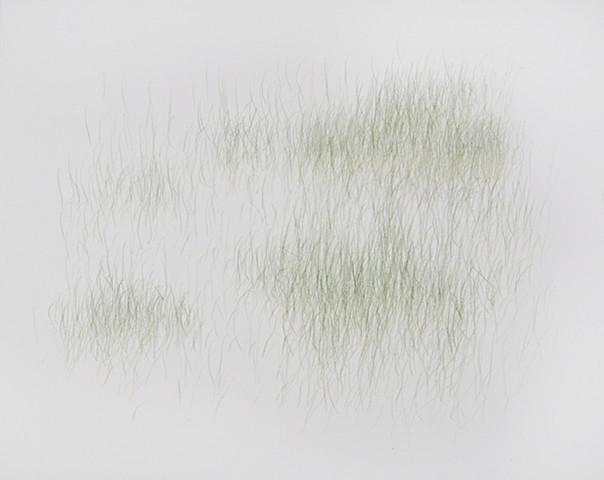 Joanne Aono, Green Fields, drawing, Hiroshima