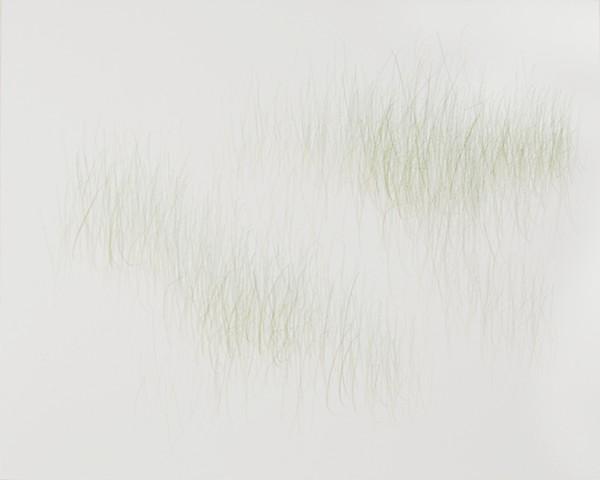Joanne Aono, Green Fields, drawing, Immigrants