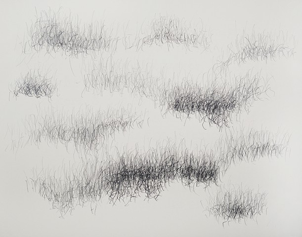 Joanne Aono, Home Fields, drawing, Mexico, Corn