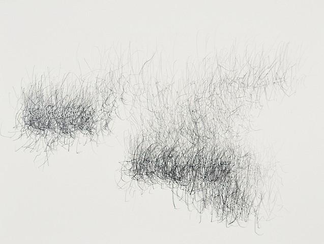 Joanne Aono, Home Fields, drawing, Colombia, Guasca