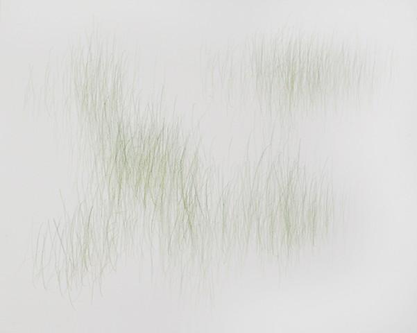 Joanne Aono, Green Fields, drawing, Fields
