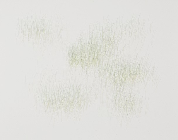 Joanne Aono, Green Fields, drawing, Issei