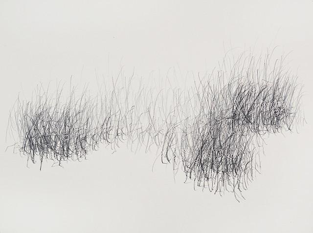 Joanne Aono, Home Fields, drawing