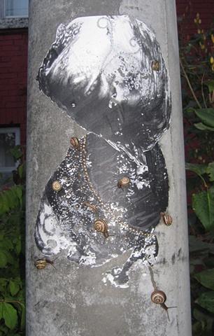 Paste-up, eaten by snails