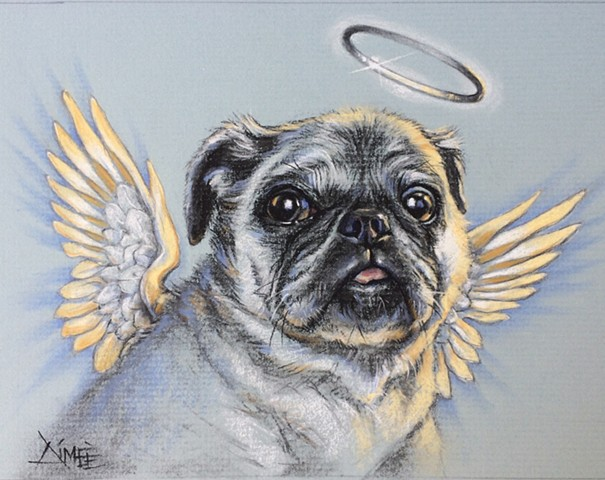 aimee kuester animal natural history museum la charcoal pastel for sale drawing art artwork pug pug life pet portrait heaven angel afterlife dog puppy pup travis louie frodo wings angelic custom dog lover regal beautiful animals beautiful for sale aimee a