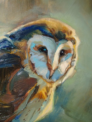 aimee kuester owl painting oil paint colorful barn owl art artwork pastel for sale artist nocturnal owls birds bird predator hunter