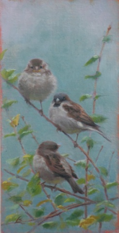 """house sparrow family"""