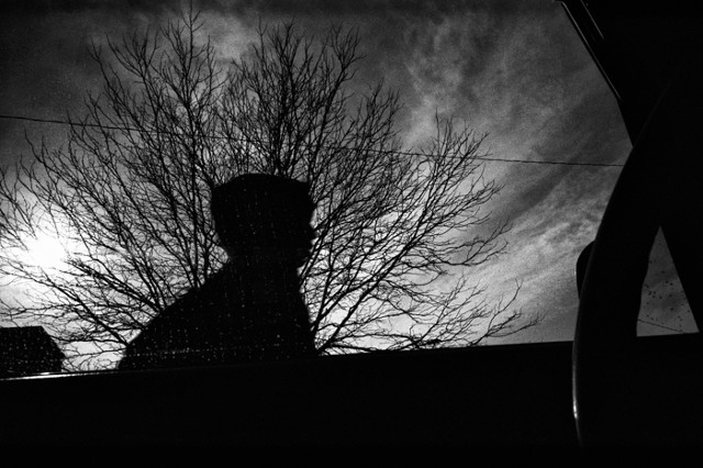 Jason Paul Roberts; Murder of Birds; street photographer; street photography; Leica; Denver; Colorado; CO