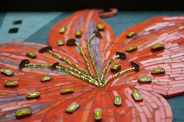Tiger Lily - detail