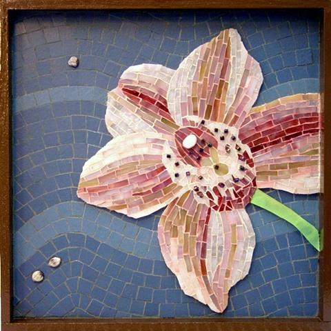 """Cymbidium Kimbodium"" - Kim's orchid"