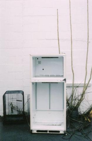 Empty fridge.  Ithaca, NY.