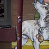 Detail from fire escape: Kiso, cafe owner's dog