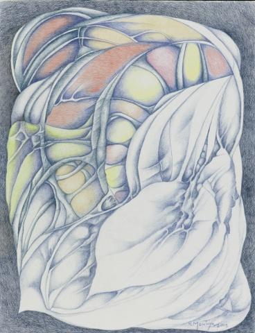 Illuminated Transfiguration