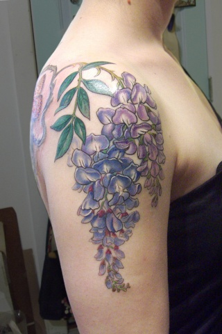 Wisteria Cover Up