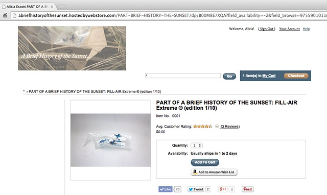 "*Part of A Brief History of the Sunset*   (Screen shots from the temporary online amazon e-commerce shop.) The site was fully shoppable, artworks were temporarily ""sold"" for $0.00 + shipping."