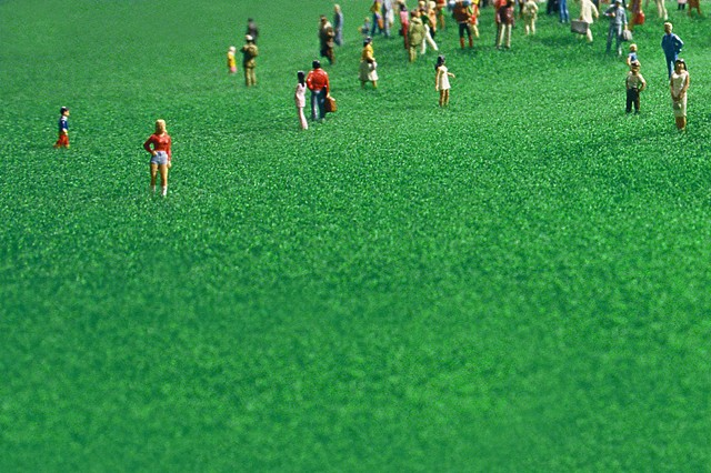 A Crowd In A Field Of Grass