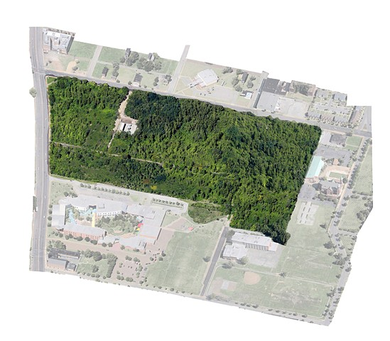 Pruitt-Igoe Bee Sanctuary (Aerial Map)