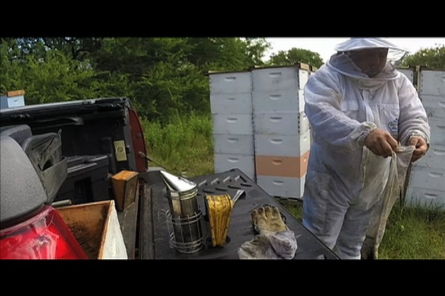 Interview: San Antonio Beekeeper