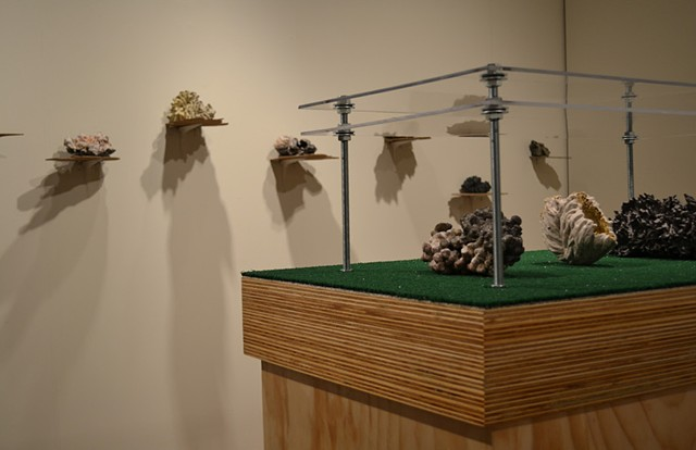 Sturgis Gallery, Senior Thesis Show