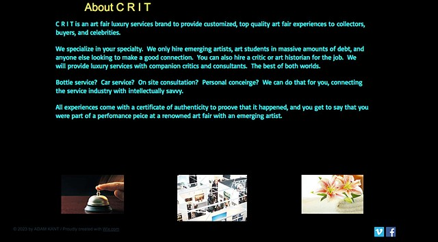 CRIT website 2