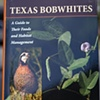Texas Bobwhites A Guide Foods and Habitat Management Jon A. Larson, Timothy E. Fulbright, Leonard A. Brennan, Fidel Hernandez, and Fred C. Bryant