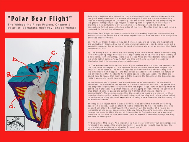 Polar Bear Flight - Chapter 2 symbolism explained