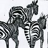 3 Running Zebras