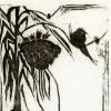 Barn Swallows in Hanging Garlic