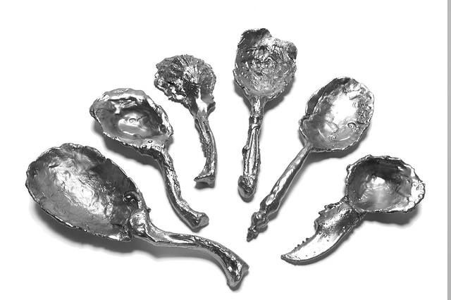 Collection of Curious Spoons