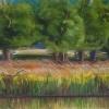 Bluemont Pond II