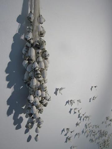 Flutter Detail