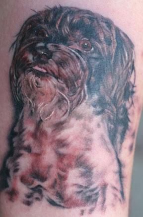 linda's dog