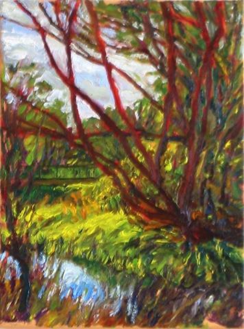 Scarlet willow near the footbridge