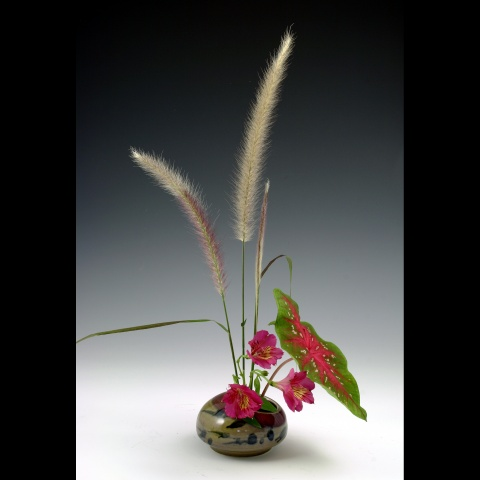 Db3 glazed IKI with Red grass, Caladium and alstromeria blooms