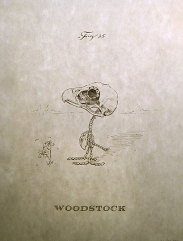 Woodstock fig. 25