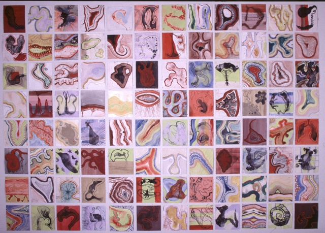 Organisms on Paper