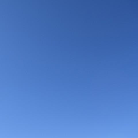In the Field (Sky 4/2/16)